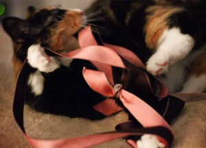 Olive with ribbon