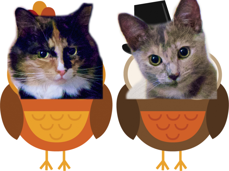 Olive and Eve Thanksgiving