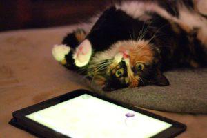 Olive with iPad