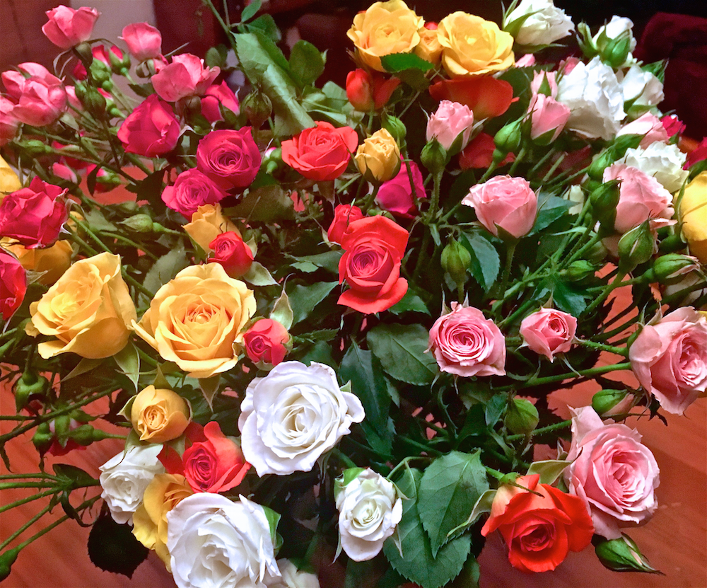 You need this farm to table florist for valentines day ask a manager because their flowers are cut the same day you order and shipped the next day they last longer youre getting them 2 4 days after they were cut izmirmasajfo