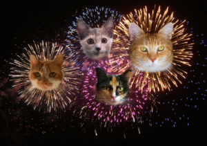 4th of July open thread — Ask a Manager