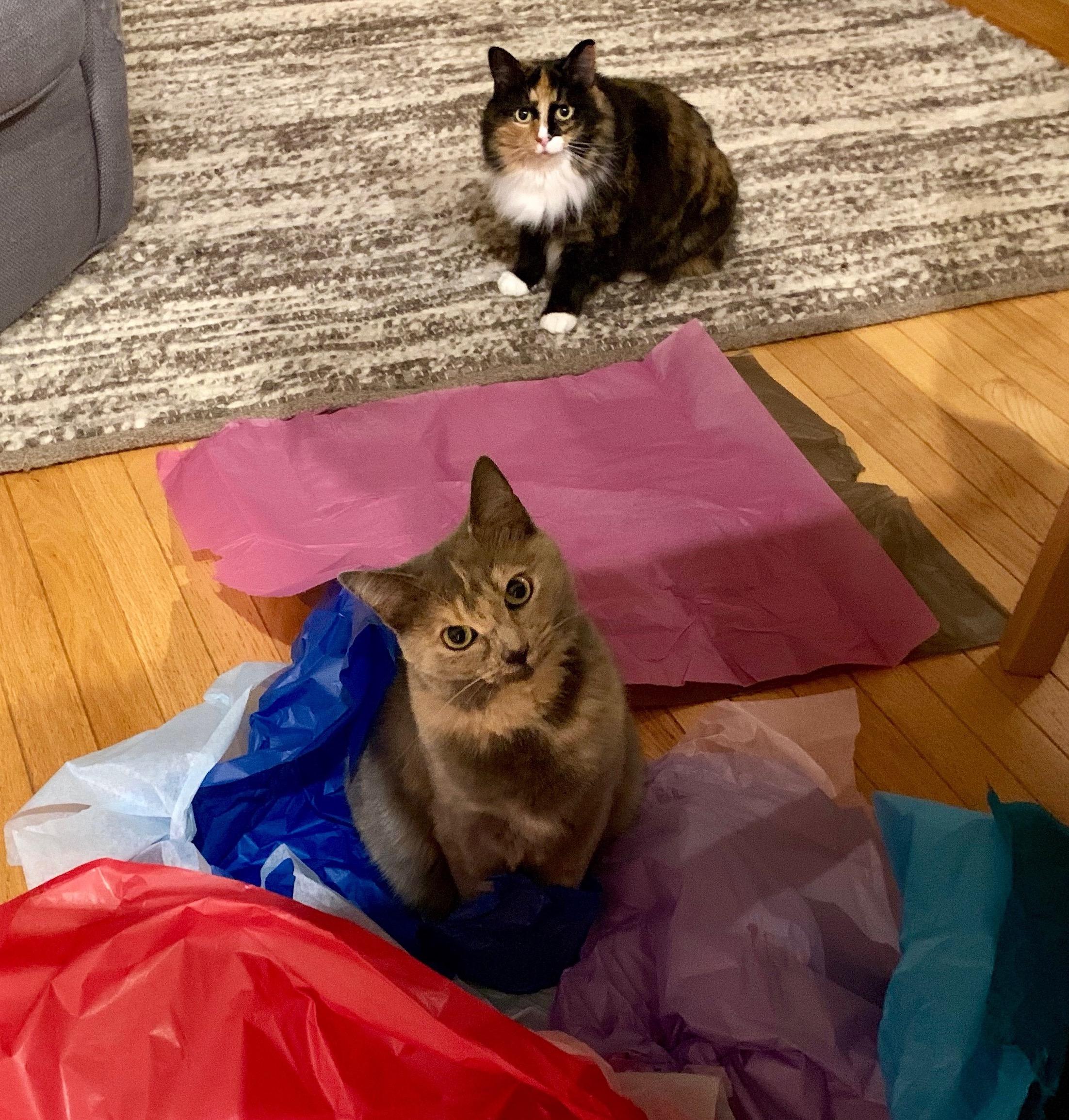 Bag Parts & Accessories Amicable Cute Cat Ear Metal Bag Handle Replacement For Diy Shoulder Bags Making Handbag